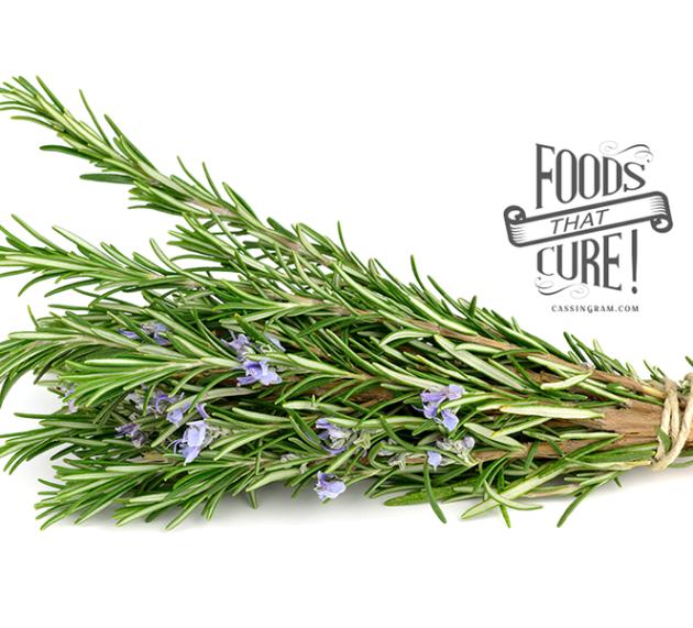 Healthy Italian Centenarians Tied to the Wild Herb Rosemary